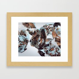 White Bird Skull Framed Art Print