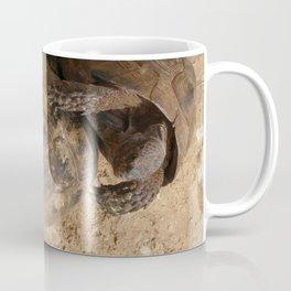 Slow Love - Tortoises Coffee Mug