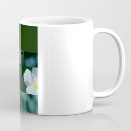 crash_ 15 Coffee Mug