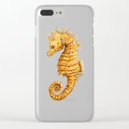 Horse of the seas, Seahorse beauty Clear iPhone Case