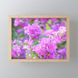 Purple Flowers in the Garden Framed Mini Art Print