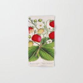 Strawberry Delights Vintage Botanical Floral Flower Plant Scientific Illustration Hand & Bath Towel