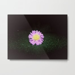 Small Flower #3 Metal Print