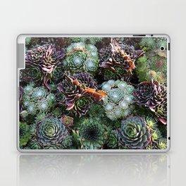 Sempervivum Laptop & iPad Skin