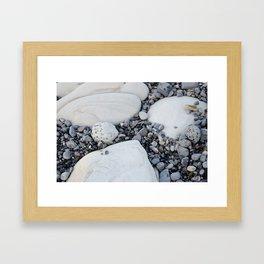 Beach Stone Framed Art Print