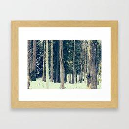 Winter Woods Framed Art Print