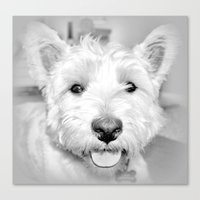 mac Canvas Prints featuring Mac by  Alexia Miles photography