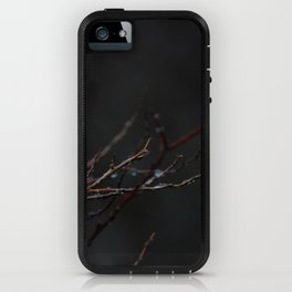 Pieces of the Sky iPhone Case