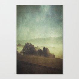 Hidden Houses Canvas Print