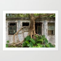 Tree taking over Art Print