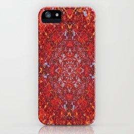 Internal Kaleidoscopic Daze-2 iPhone Case