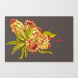 Protea Flower Pattern - Grey Canvas Print
