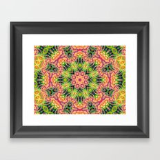 BBQSHOES: Kaleioscopic Fractal Mandala 1543K2 Framed Art Print