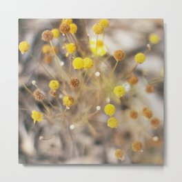 Abstract Botanical - Billy Buttons Metal Print
