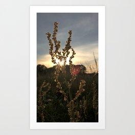 Sunset Farewell Art Print