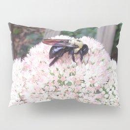 Bee on Autumn Joy Sedum Pillow Sham