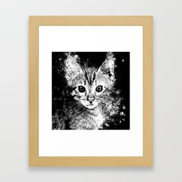 cat years wsbw Framed Art Print