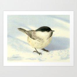 Chilly Chickadee Art Print