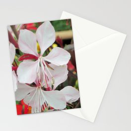 Delicate Pink Stationery Cards