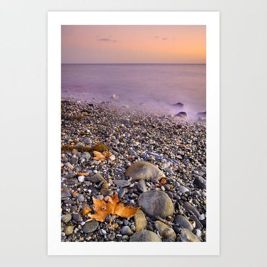 Dried leaves at the sea sunset Art Print