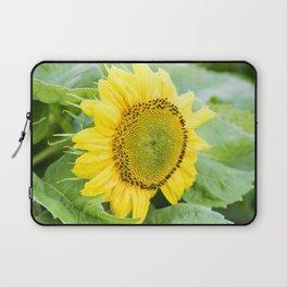 Teddy Bear Sunflower Bloom Laptop Sleeve