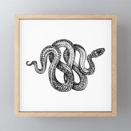 snake tattoo sketch Framed Mini Art Print
