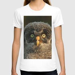 Baby great gray owl T-shirt