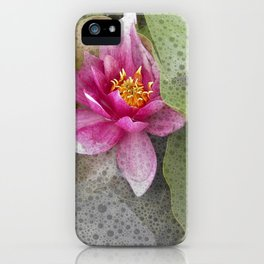 soft water lily IV iPhone Case