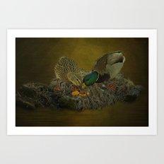 Mallards Having A Meal Art Print