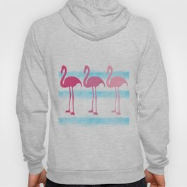 Pink Flamingos Hoody