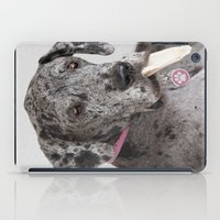 great dane iPad Cases featuring Great Dane by Deborah Janke