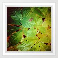 Autumnal#5 Art Print