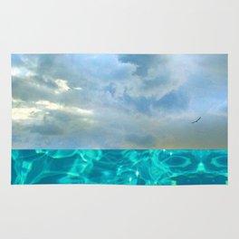 seascape 006: solo flight over swimming pool Rug