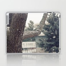 Reticent Laptop & iPad Skin