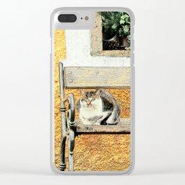 Cute Cat in Hallstatt 2 Clear iPhone Case