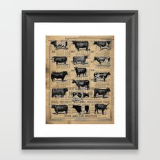 Vintage 1896 Cows Study on Antique Lancaster County Almanac Framed Art Print
