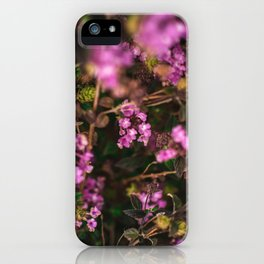 Trailing Lantana Flower Printable Wall Art | Floral Plant Botanical Nature Outdoors Macro Photography Print iPhone Case