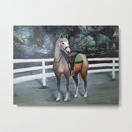 Abbey, Dressed to Trot Metal Print