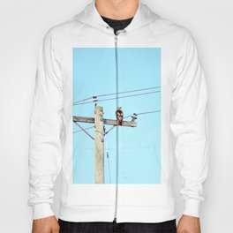 Red Tailed Hawk on Pole Hoody