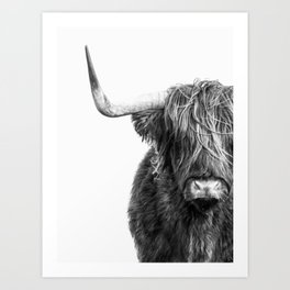 Highland Cow Portrait - Black and White Art Print