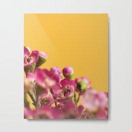 016 Flower Metal Print