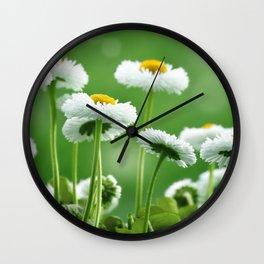 Daisy Flowers 094 Wall Clock