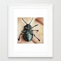 bug Framed Art Prints featuring Bug by jmdphoto