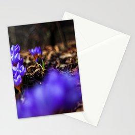 Nature : Wildlife Stationery Cards