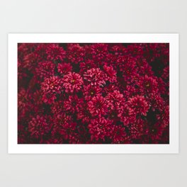 Painting The Flowers Red Art Print