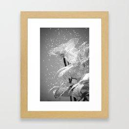 Entropy II Framed Art Print