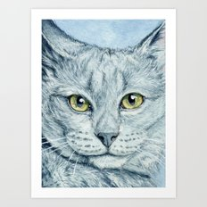 Grey Cat 236 Art Print
