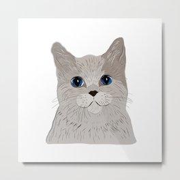 Grey cat Blue eyes Metal Print