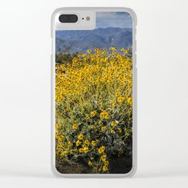 Wild Desert Flowers Blooming in the Anza-Borrego Desert State Park, Southern California Clear iPhone Case