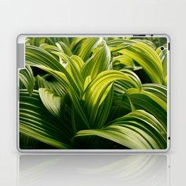 Green Goodness by Mandy Ramsey, Haines, Alaska Laptop & iPad Skin